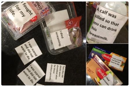 home activism samples.jpg